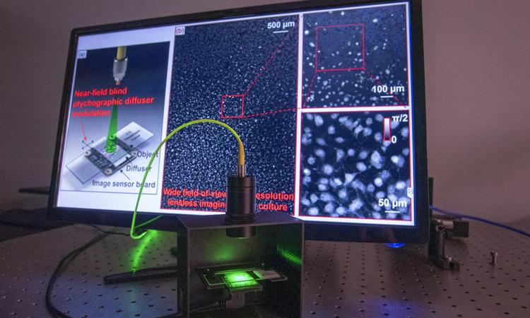 Label-free microscopy