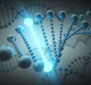 Artificial gene