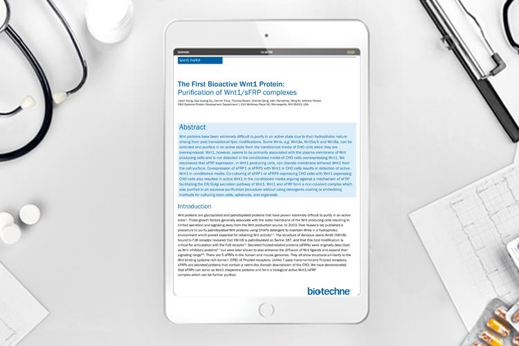 biotechne protein whitepaper