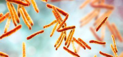 Human tuberculosis blood signal replicated in mice