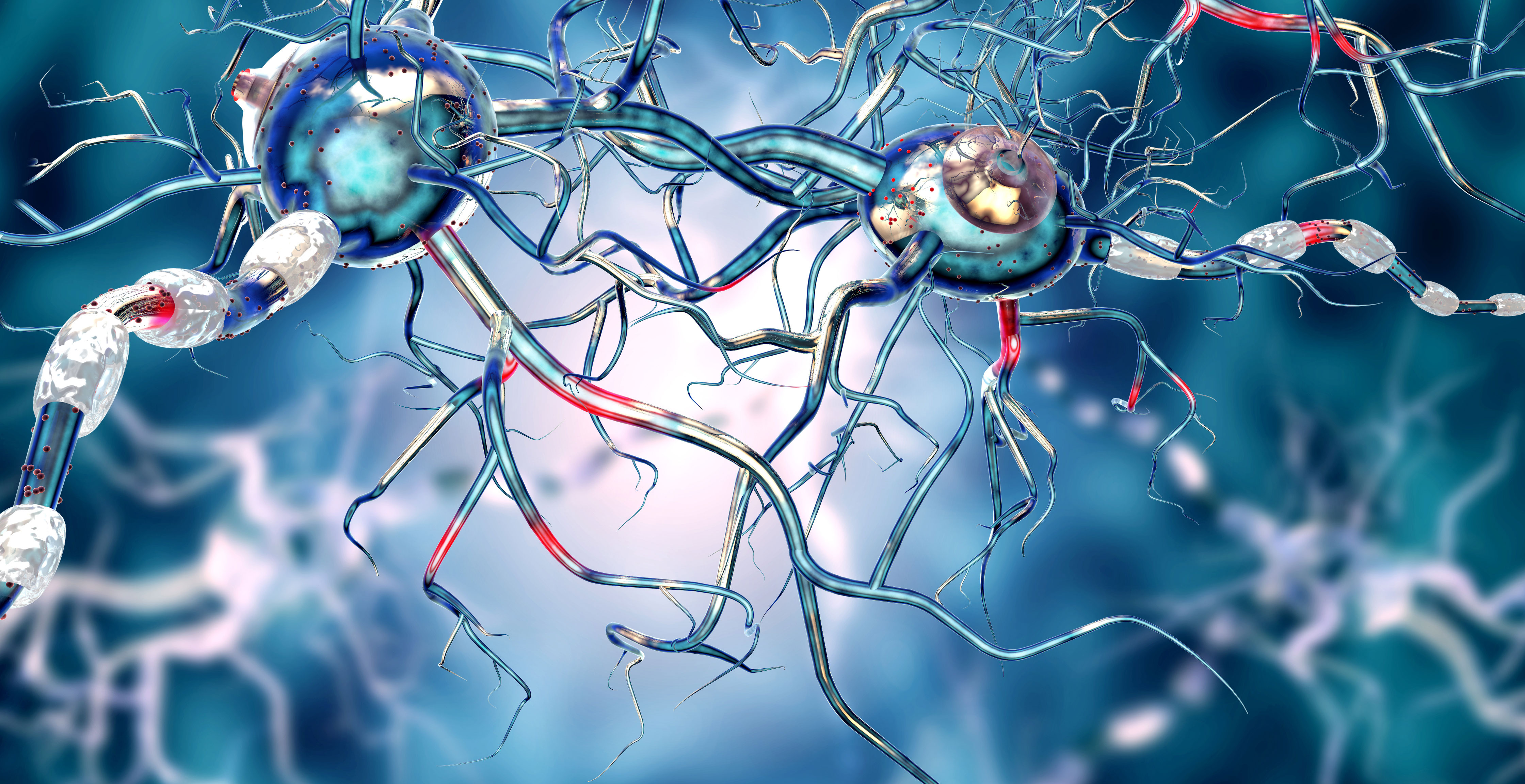 New insight into Huntington's disease may open door to drug development