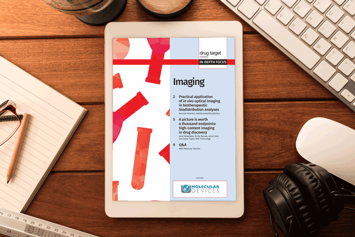 Imaging In-Depth Focus 2016