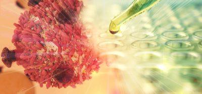 SLAMF6 immunotherapy