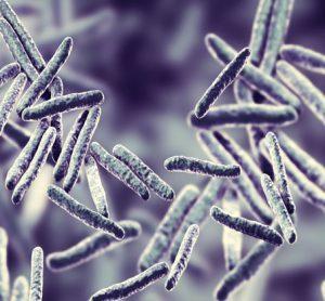 TB-gene signature