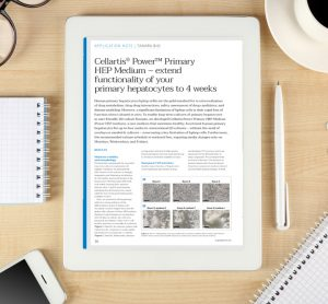 Application note: Cellartis® Power™ Primary HEP Medium – extend functionality of your primary hepatocytes to 4 weeks