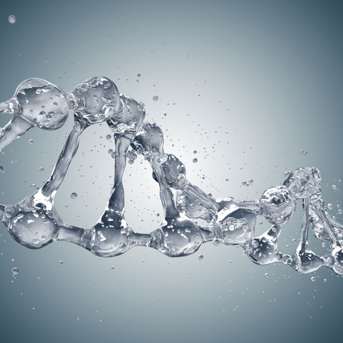 water in dna