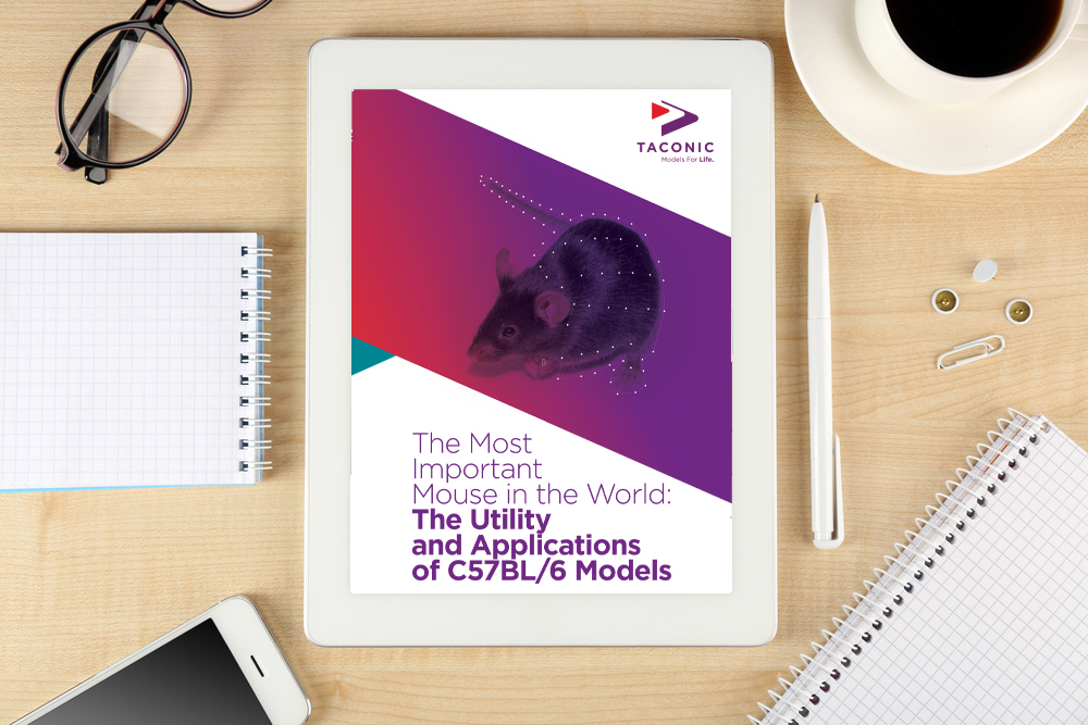 Whitepaper: The most important mouse in the world: the utility and applications of C57BL/6 models