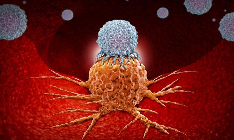 car-t-cells