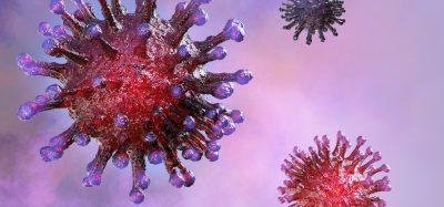 3D rendering of coronavirus particles