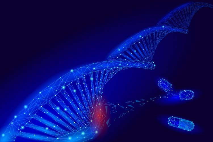 section of DNA molecule highlighted in red with pills next to it