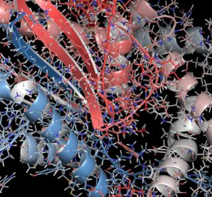 Imaging Biomarkers transforming drug discovery