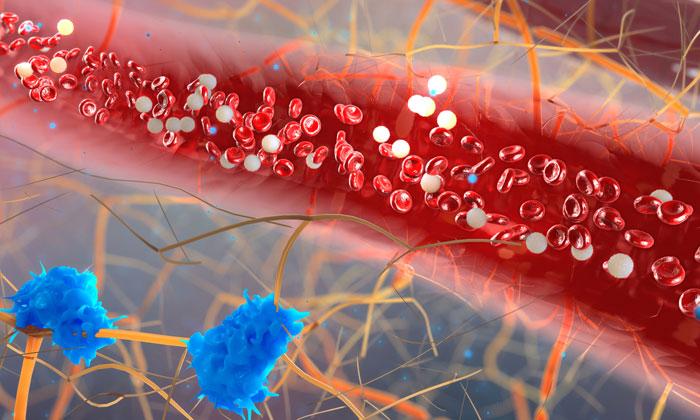 immune-cell-heart-disease