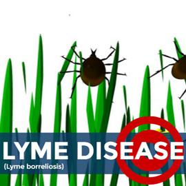 Lyme Disease News Articles Whitepapers Drug Target