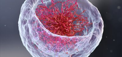Artist impression of a nucleus, cut open to reveal DNA with chromatin core inside
