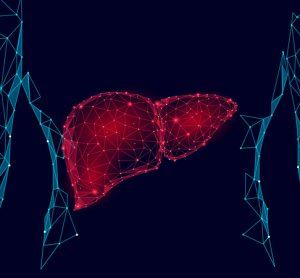 Liver algorithm