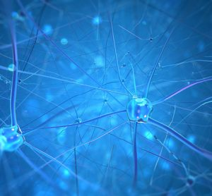The combination of two proteins exerts a regenerating effect in Parkinson's disease