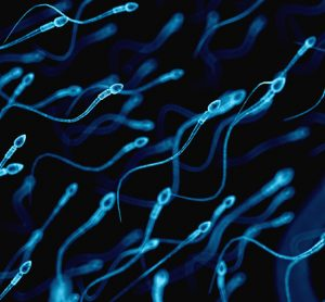 Sperm RNA may serve as biomarkers of future health