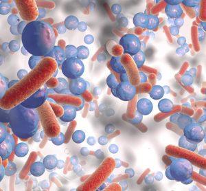 Bacterial on antibacterial film